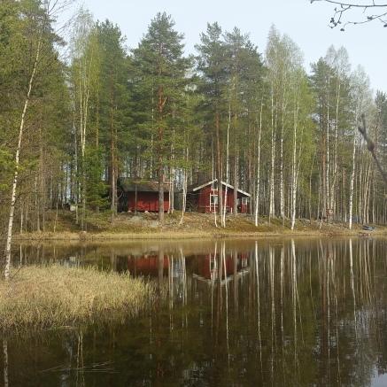 Niskasaari / Joakim Kärkäs