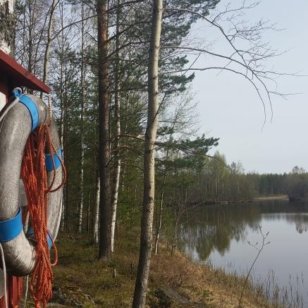 Pelastusrengas Niskasaaren rannalla / Joakim Kärkäs